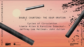 Double Counting: The Odum Oration